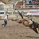 Saddle Bronc 3 Pikes Peak or Bust Rodeo by hedgie6