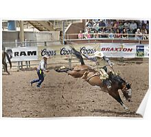 Saddle Bronc 3 Pikes Peak or Bust Rodeo Poster