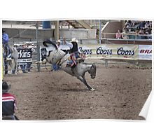 Saddle Bronc 4 Pikes Peak or Bust Rodeo Poster