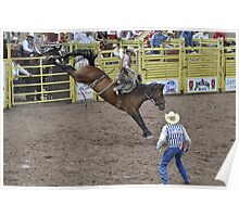 Saddle Bronc 5 Pikes Peak or Bust Rodeo Poster
