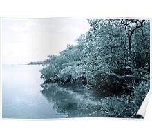 Tranquil shoreline Poster