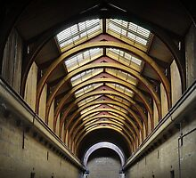 Cellblock roof by Peter Hammer