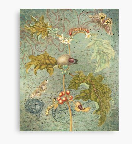 Vintage Floral Collage - Carte Postale & Butterfly - Green Floral & Berries - French Script Ephemera Canvas Print