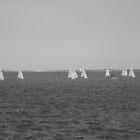 Sailing Lessons by Seth LaGrange
