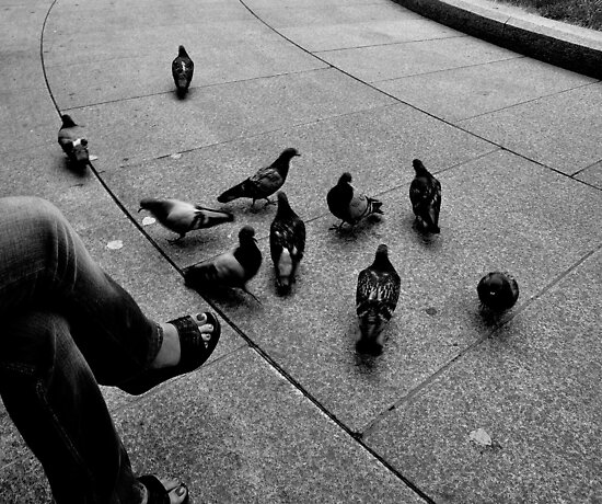 "City Life - ""Feeding Doves II"" by Denis Molodkin"