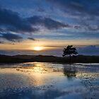 Tarn Reflections by Jeanie
