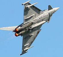Eurofighter Typhoon combat aircraft by Tony Steel