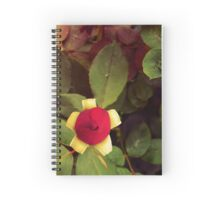 Roses and Poetry Spiral Notebook