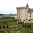 Chateau de Villandry by Hertsman