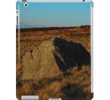 Lone Stone iPad Case/Skin