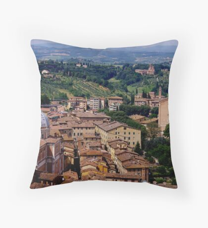 Siena Throw Pillow