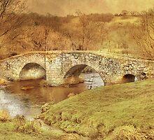 Spara Bridge by Catherine Hamilton-Veal  ©