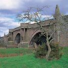 Bridge of Dun by derekwallace