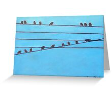 Birds, Wires 11 Greeting Card