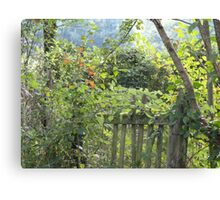 The day before fall Canvas Print
