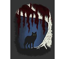 The wolf and the weirwood Photographic Print