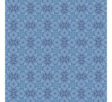 Soft Blue Tracery Photographic Print