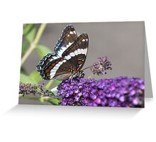 Butterfly Flower With Guest Greeting Card