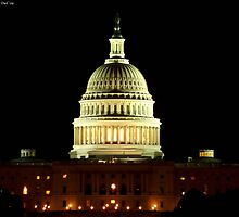 The Capitol at Night by Dawn Barberis-Viczai