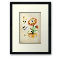 Fire Flower Botanical Illustration Framed Print