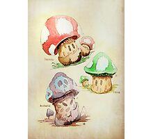 Mario Mushrooms Botanical Illustration Photographic Print