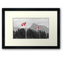 Rockies : Columbia Icefields Framed Print
