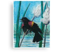 Red Wing Black Bird - Oil Pastel Canvas Print