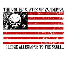 United States of Zomberica Photographic Print