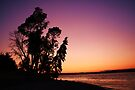 Otso Point with a purple sunset by Joshua Greiner