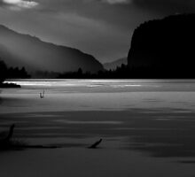 While You Were Sleeping bw by John Poon