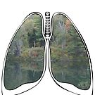 Lungs - National Park Lake by riskeybr