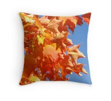 Fall Excitement  Throw Pillow