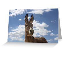 It's My Birthday. So What If My Head Is In the Clouds? Greeting Card