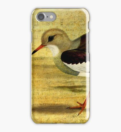 'Like a Lapwing' iPhone Case/Skin
