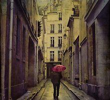 le  flâneur sous la pluie by dawne polis