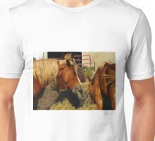 Don't even think about wacking me with that tail..☺ Unisex T-Shirt