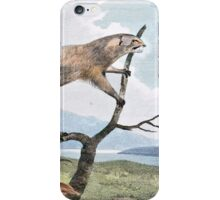 Ichneumon (Mongoose) Wildlife Art iPhone Case/Skin