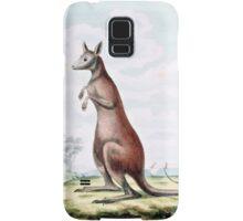 Kangaroos Vintage Drawing Samsung Galaxy Case/Skin