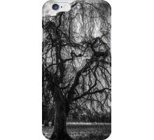 A Winter Tree in B&W iPhone Case/Skin