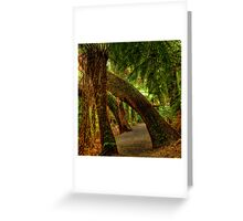 Tarra Valley Archway Greeting Card
