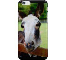 Donkey pose iPhone Case/Skin