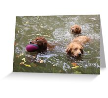 Water Play With Family - 10 Greeting Card