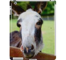 Donkey pose iPad Case/Skin