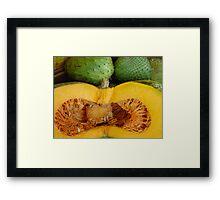 Sliced Pumpkin  Framed Print