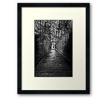 Bulga Bridge #2 Framed Print