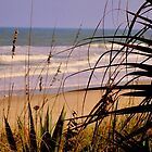 Peek at the shores by Susanne Van Hulst