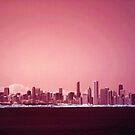 Chicago Skyline by Paula Bielnicka
