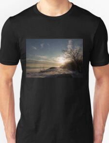 Frosty Grasses, Shrubs and Rocks on the Shore of Lake Ontario in Toronto Unisex T-Shirt