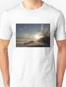 Frosty Grasses, Shrubs and Rocks on the Shore of Lake Ontario in Toronto T-Shirt