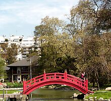 japanese Garden, Buenos Aires, Argentina by lauria